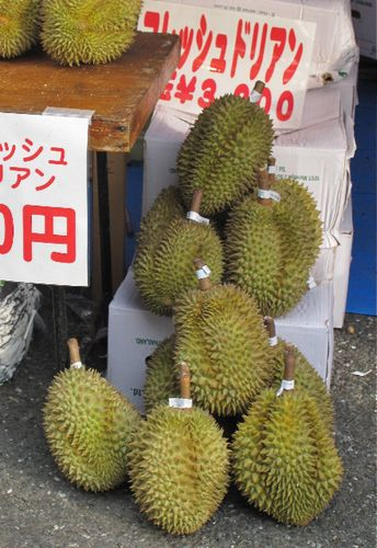 Lao-durian