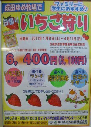 JR ichigo poster 3 © Tokyo Food File