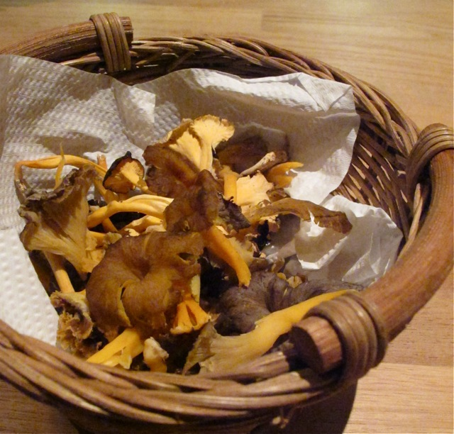 chanterelles 1 (c) Tokyo Food File