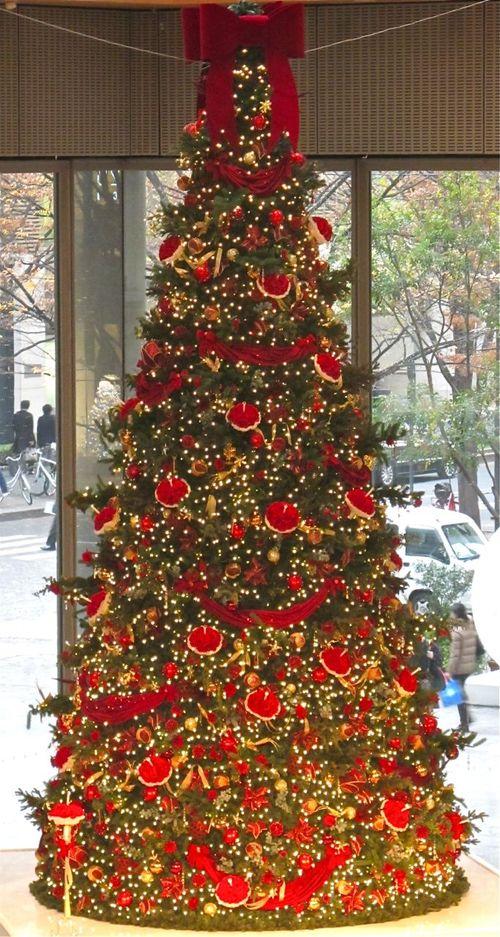 marubiru tree (c) Tokyo Food File