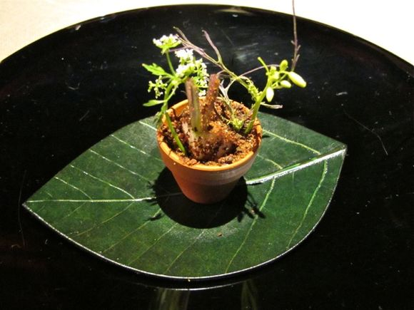 Takazawa amuse3 plantpot © Tokyo Food File