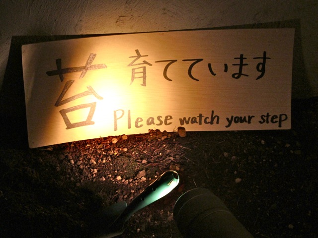 Den5 collabo moss © Tokyo Food File