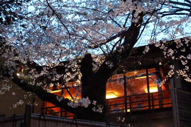 Innsyoutei 1 © Tokyo Food File