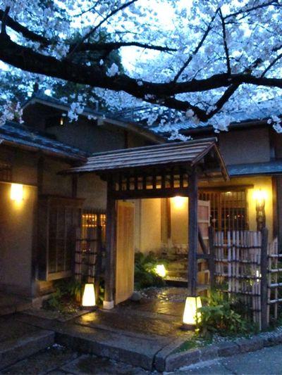 Innsyoutei 3 © Tokyo Food File