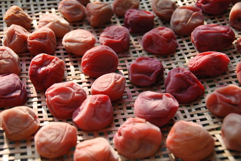 umeboshi day1 drying close-up © Tokyo Food File
