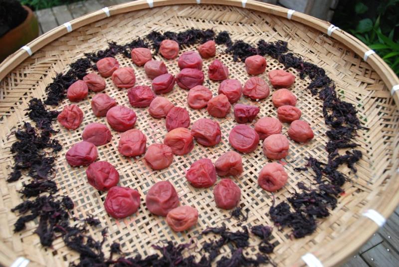 umeboshi day 2 © Tokyo Food File