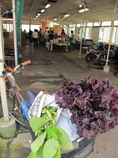 Market shiso bike © Tokyo Food File