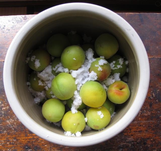 Ume crock salt © Tokyo Food File