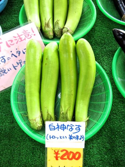 shirakami nasu © Tokyo Food File