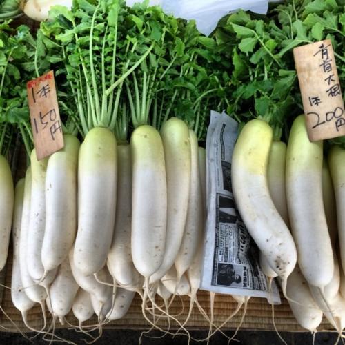 kamakura daikon © Tokyo Food File