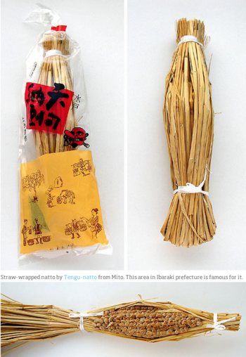 http://pingmag.jp/2008/02/18/japanese-packaging-design-6-imitating-nature/