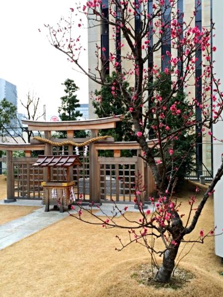 Komatsu shrine © Tokyo Food File