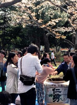 Hanami taruzake 1 © Tokyo Food File