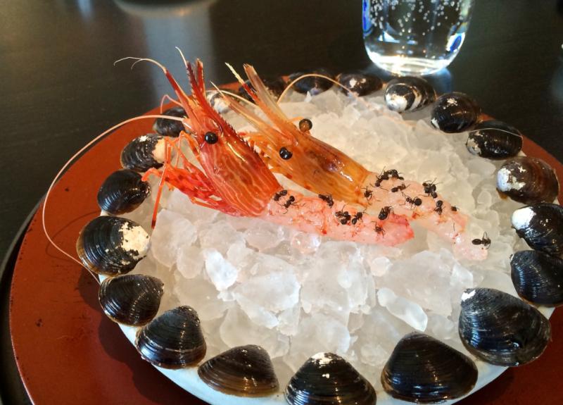 Botan Ebi @ Noma Japan © Tokyo Food File